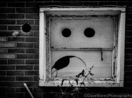 Window of disbelief